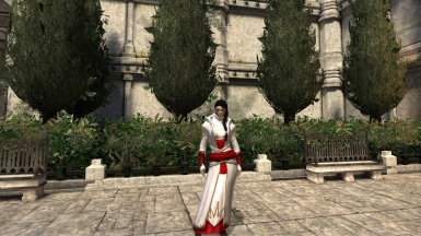 Inquisition Chantry Robes