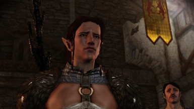 The Best Save Game Import For DA2  Elven BloodMage Kieran Complete Including All The DLC