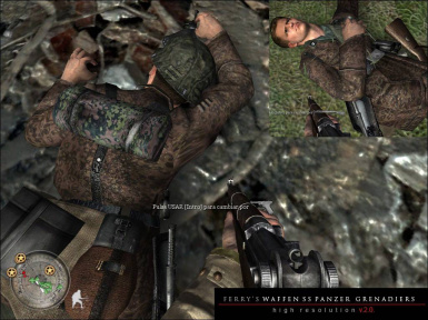 Ferry's Waffen SS Panzer Grenadier Skins (v2 0) at Call of Duty 2
