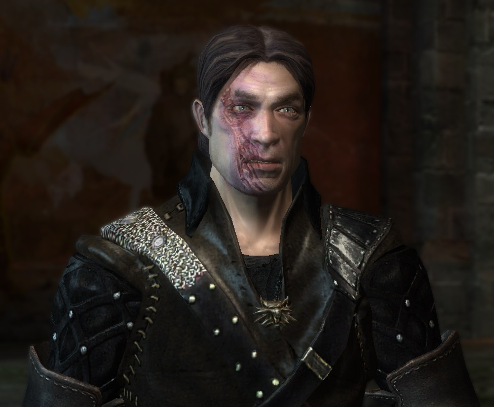 witchers eye replacement at the witcher nexus  mods and