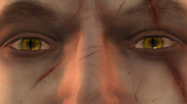 Golder Geralt Eyes for TW1