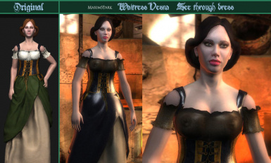 TW1 - Vesna See Through Dress and Retexture