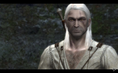 Geralt's default face with RofTWW textures