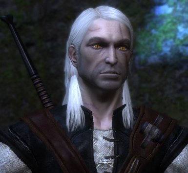 Unique Eyes for all Witchers