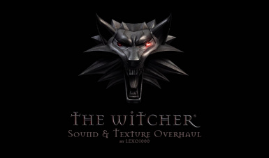 The Witcher Overhaul Project