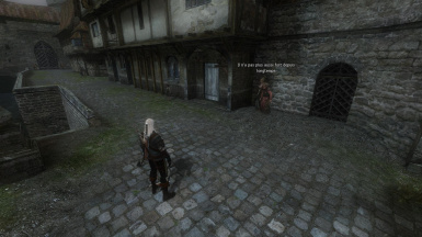 The Witcher Overhaul Project at The Witcher Nexus - mods and