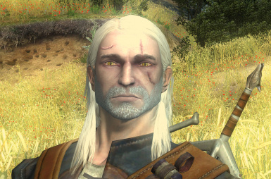 The Witcher EE - GERALT FACE MOD (face from TW2)