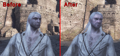 Witcher 1 HD Faces