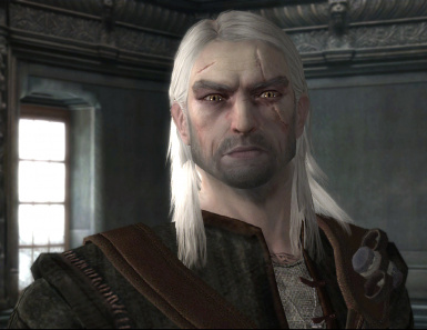 Geralt detailed face textures