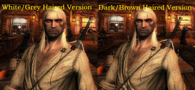 Lore-Friendly TW3 Geralt Face Retexture Fix (Rise of the White Wolf Compatible)