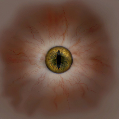 Eye Texture from Witcher 1 AI Upscaled Textures