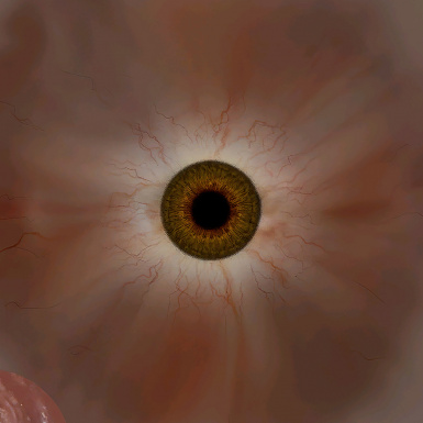 Eye Texture from Witcher 2 AI Upscaled Textures