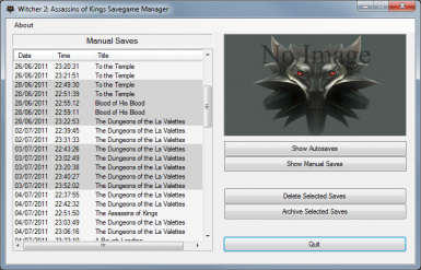 Witcher 2 Gamesave Auditor
