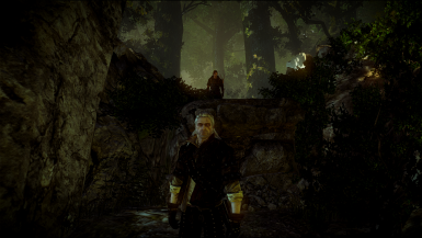 Witcher 2 EE Saves- The path of your choice