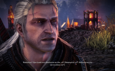 The Witcher 2 Insane Mod Save