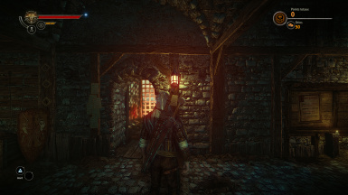 Better Camera for Master Witcher Redux