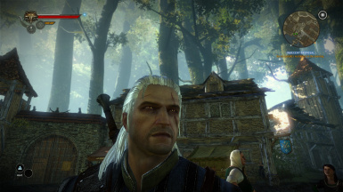 Geralt of Rivia from Witcher 3 retexture Stubble FIX