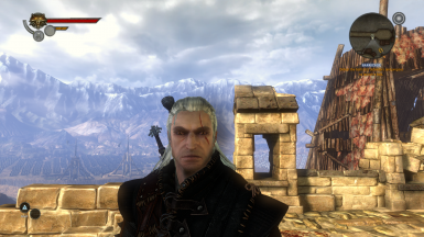 The Witcher 1 colored scars for The Witcher 2
