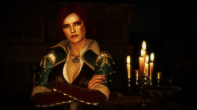 Witcher 3 Save Import - Roche And Triss Path
