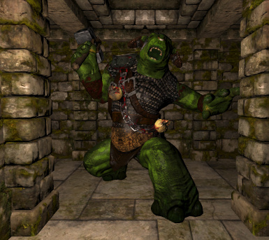Green Ogre with battle wear