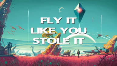 Fly It Like You Stole It
