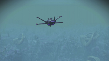 Hover and Low Flight and Underwater Flight (Experimental)