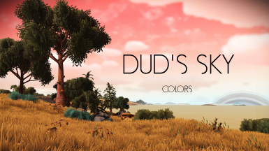 DUD'S SKY - COLORS