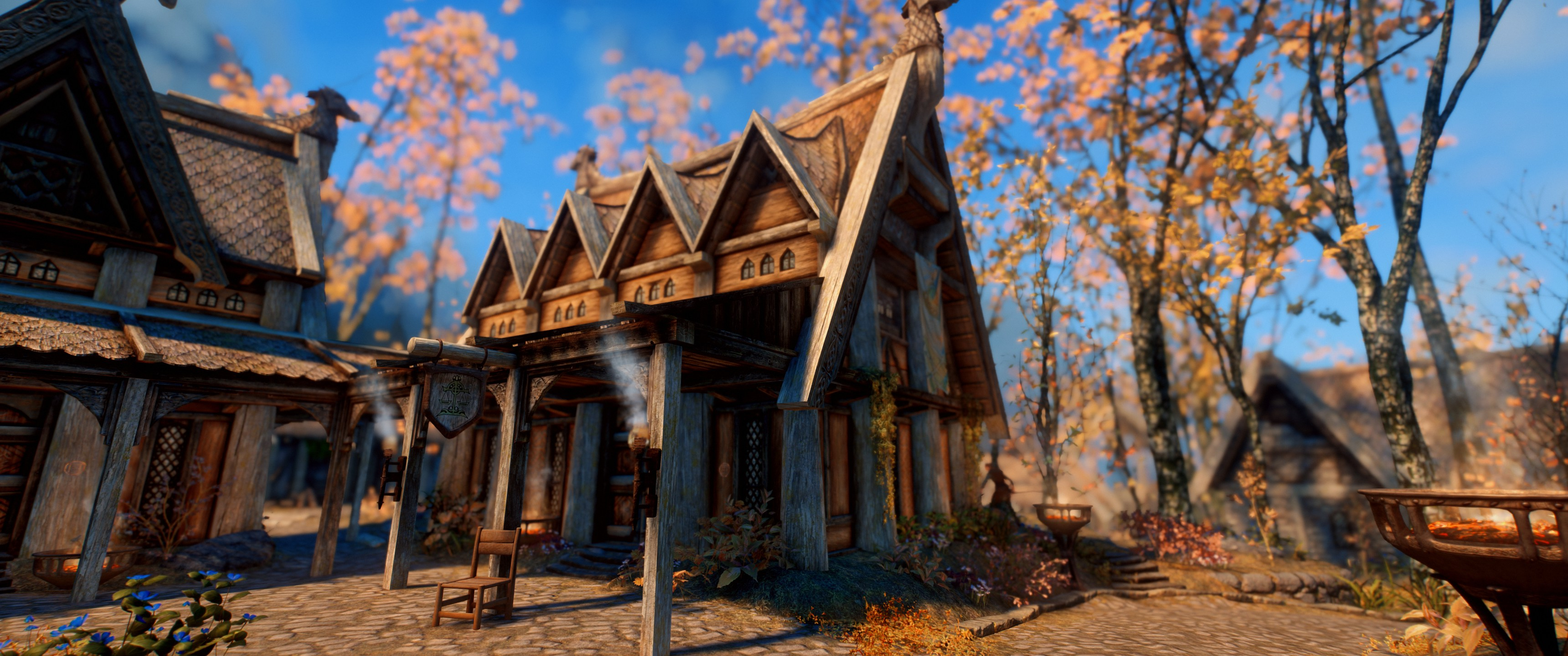 how to use mod organizer with skyrim special edition