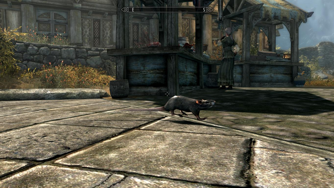 Traduction FR Sewer Rats - Mihail Monsters and Animals (SSE) (mihail immersive add-ons- animals) at Skyrim Special Edition Nexus - Mods and Community