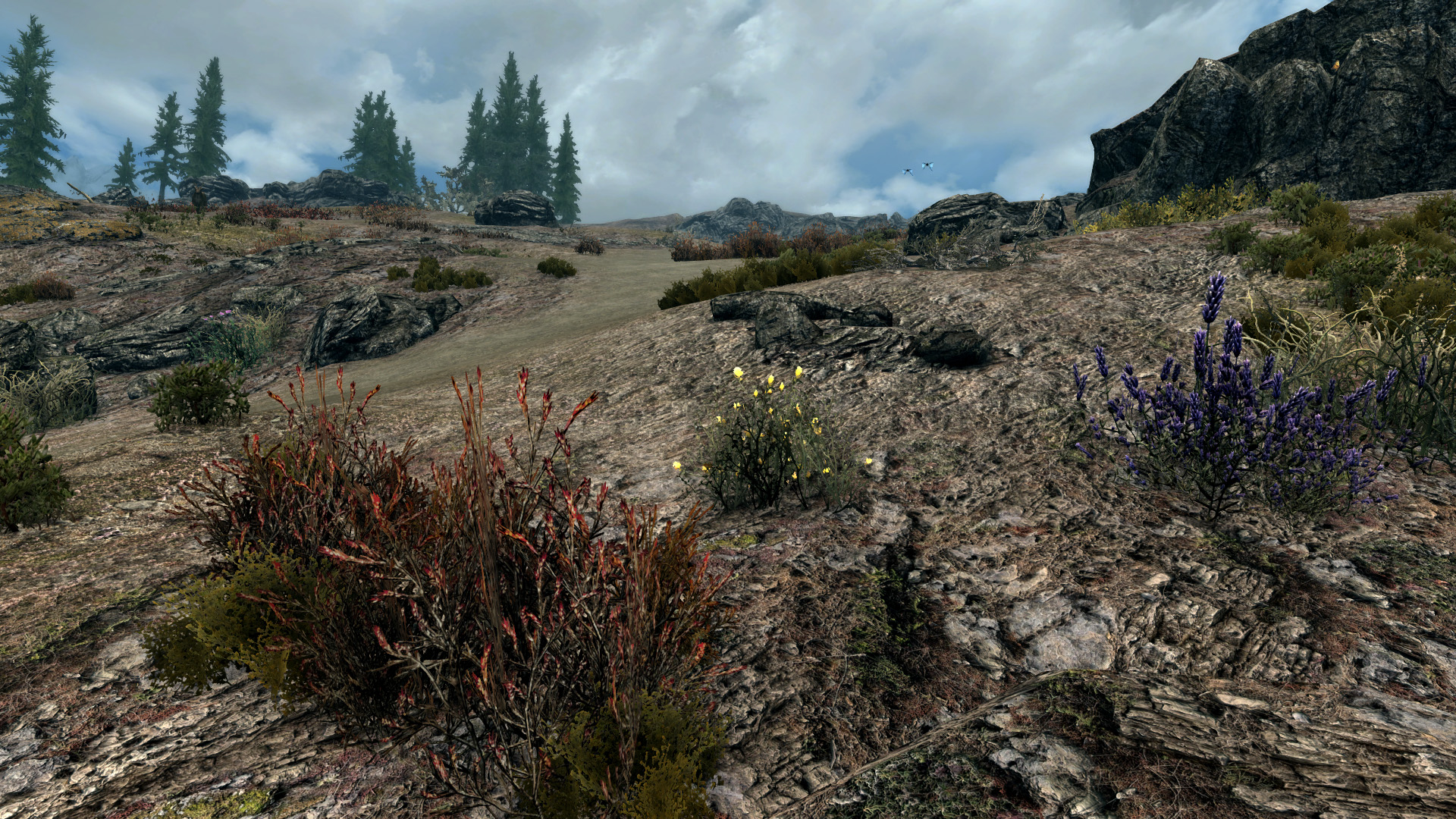 More Yellow Mountain Flowers At Skyrim Special Edition Nexus Mods