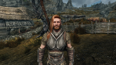 Erik the Slayer - Improved and marriable at Skyrim Special
