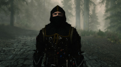 Chainmail Masked Hood