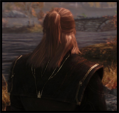 Geralt Witcher hair included in next version