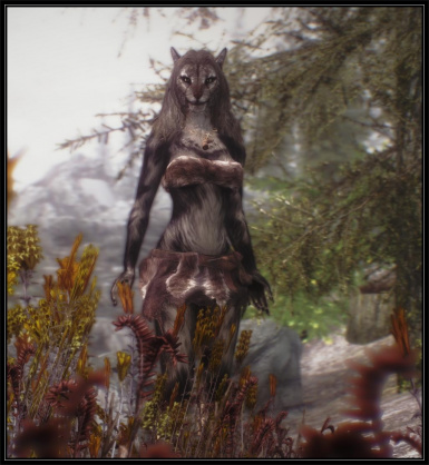Female Khajiit long hair  v_1_3