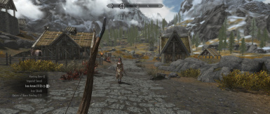 TruBy9 UltraWide - SkyrimSE at Skyrim Special Edition Nexus