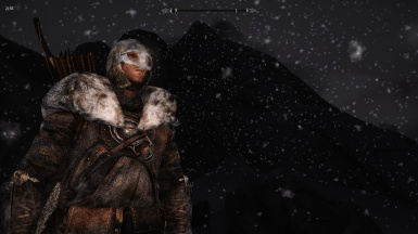 My current character during heavy night snow storm