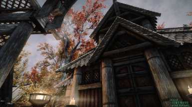 6  TUCOGUIDE and NATURAL VIEW TAMRIEL ENB