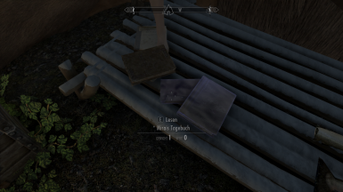 first quest, the book u have to find