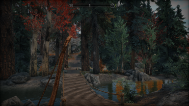 Pathway Bridge over lake in forest