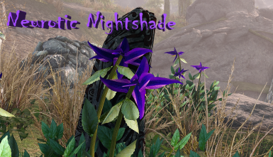 Neurotic Nightshade