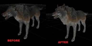 BeforeAfterTimberWolf