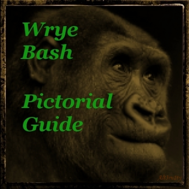 Wrye Bash Pictorial Guide