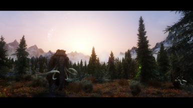 Whiterun Forest Borealis at Skyrim Special Edition Nexus - Mods and