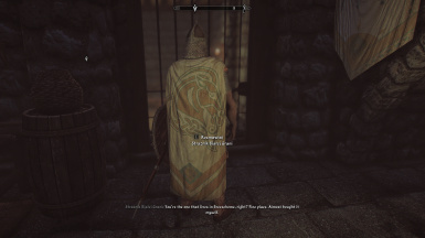 Cloaks of the Nords for Guards
