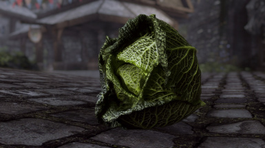 Solitary Cabbage