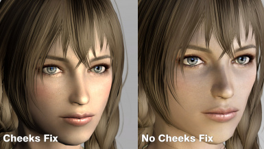 Cheeks fix option