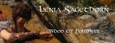 Lienia Sagethorn- Wood Elf Follower by BloodScourge88 - Ported to SSE by bchick3
