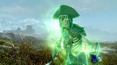BE A SKELETON GHOST PIRATE