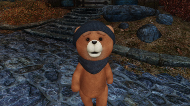 Rupert the Teddy Bear Companion SE