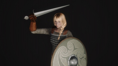 21 - Hauberk Lamellar - Type XV - Viking Shield Grey